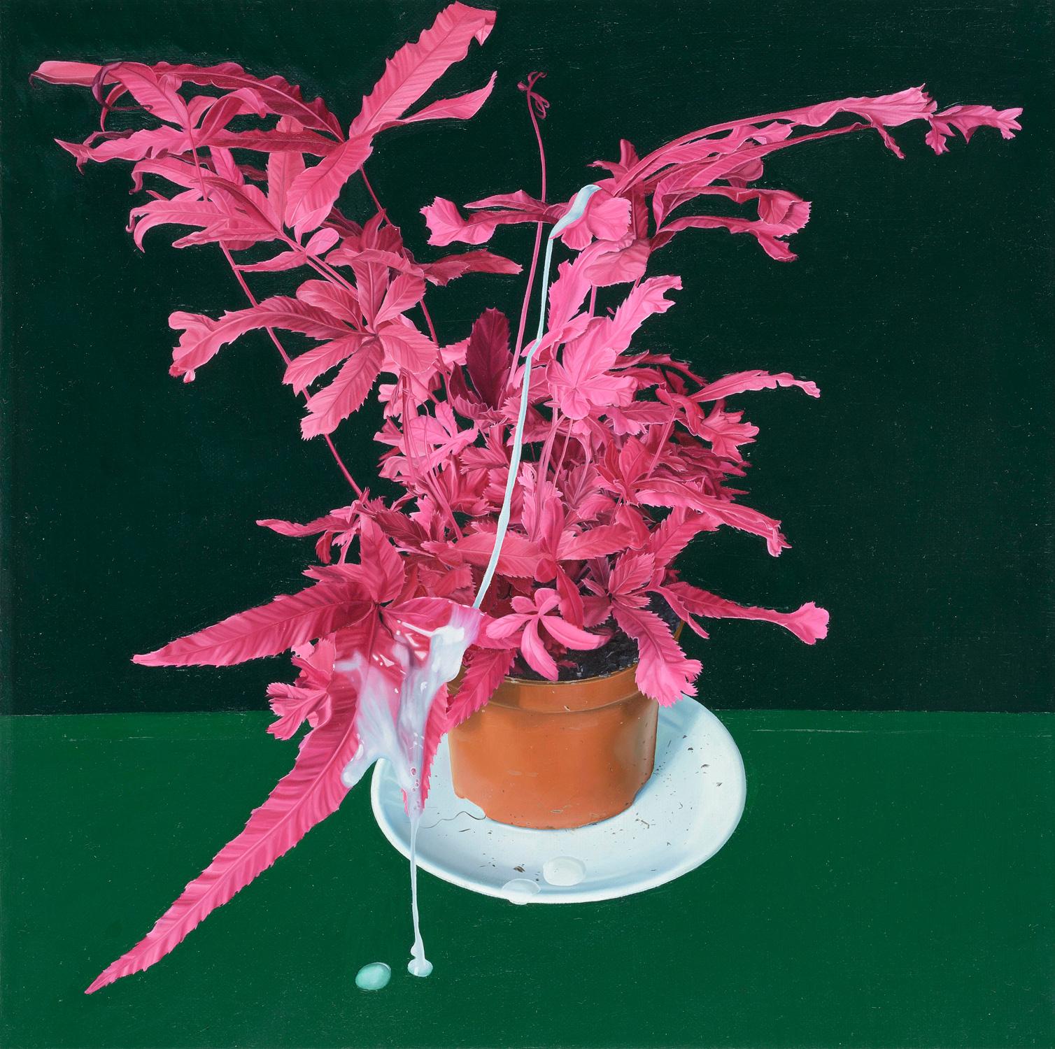 Tristan Pigott   Misfired Shot at Nature Morte,   Oil on linen  20 x 20 cm