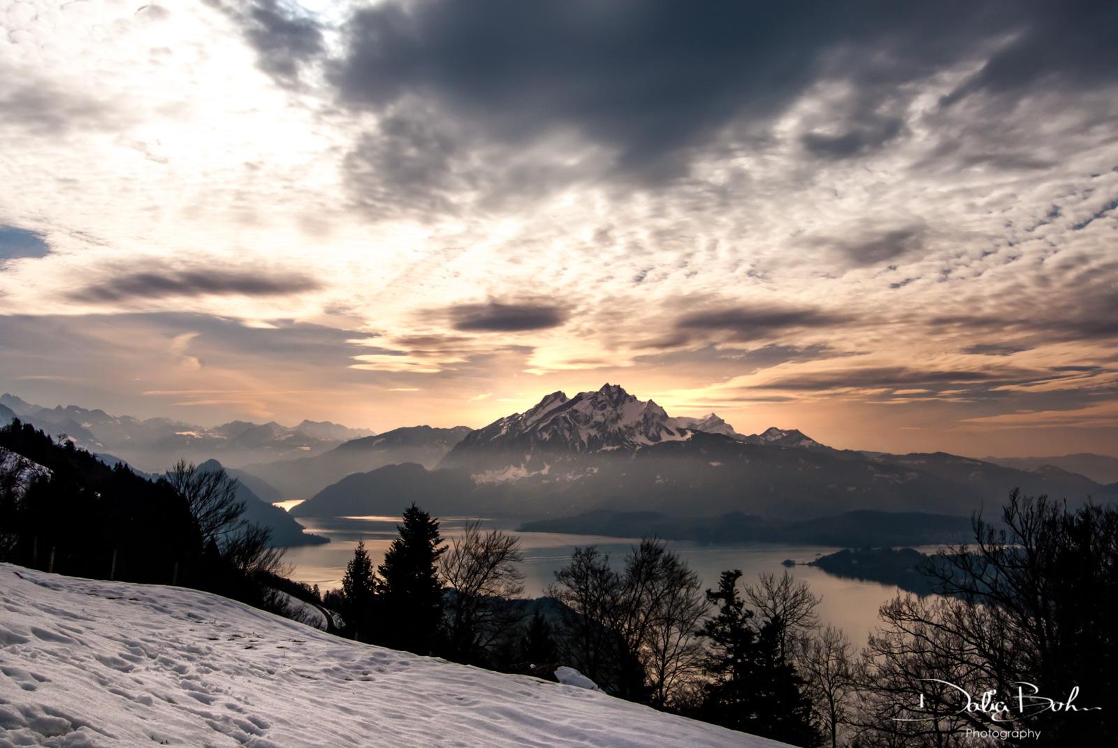 Schweiz | Schwyz | Rigi-Seebodenalp