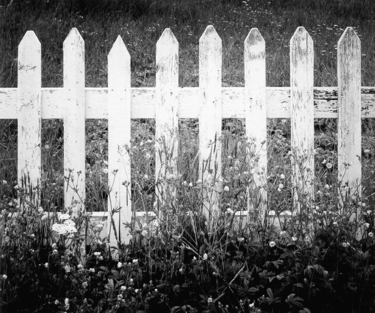 picket_fence1.jpg