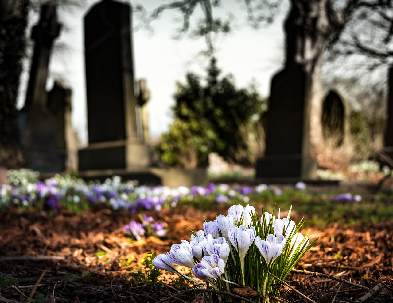 graveyard-1417871_1280.jpg