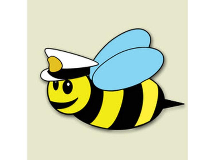 Admiral Bumblebee.jpg