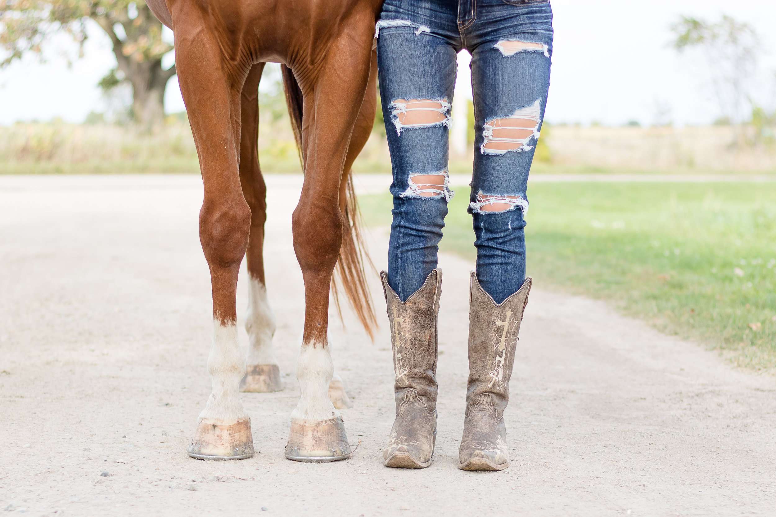 Unique Senior Photos with horse Wisconsin