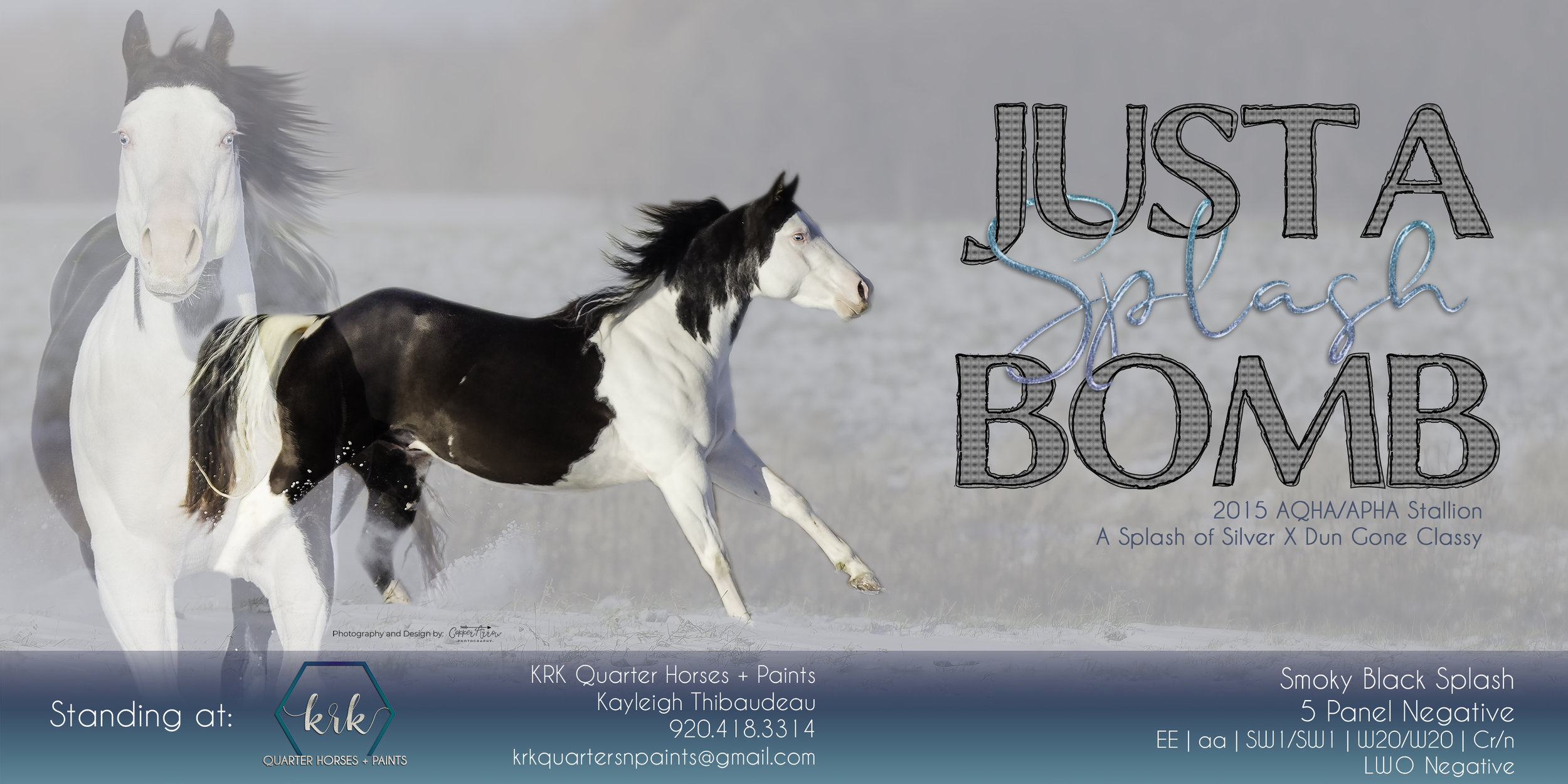 Stallion Ad Design
