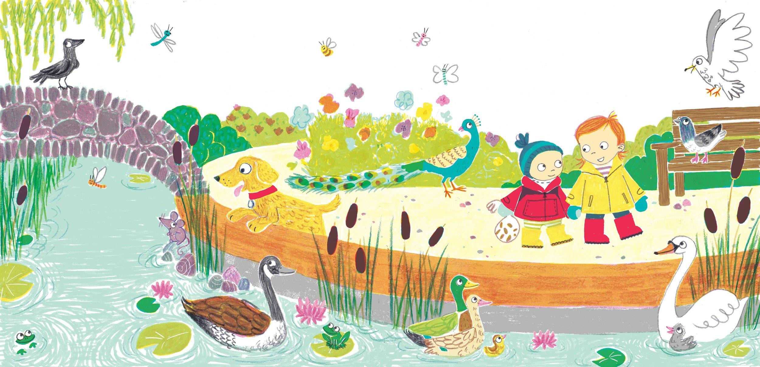 ducks final 1 for website.jpg