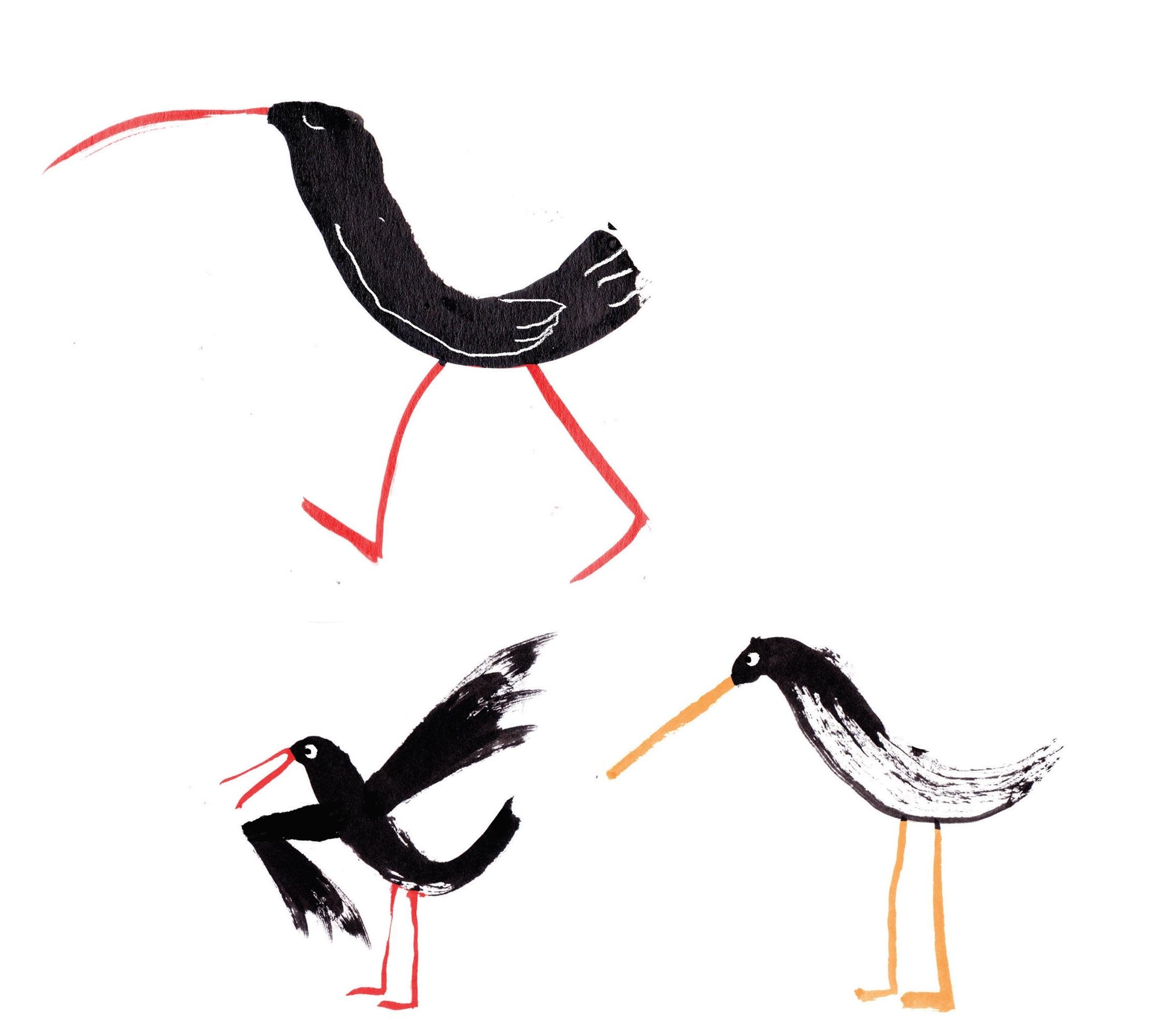 birds - Copy.jpg
