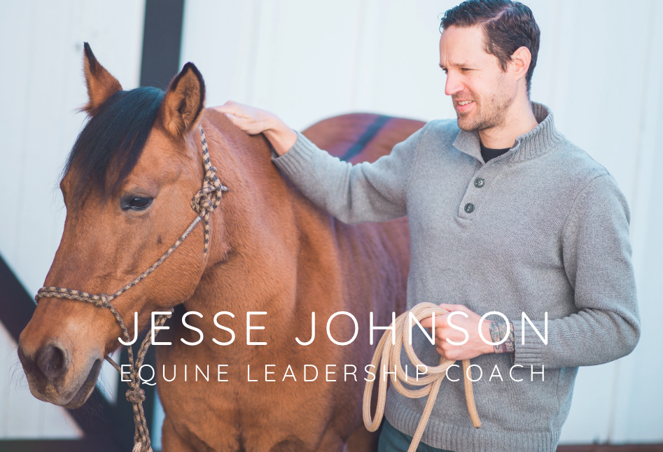 Equine Leadership Play Workshop at Wild Horse Mountain Ranch - Join Equine-Facilitated Leadership Coach, Jesse Johnson, for a fun and exhilarating experiential workshop with some of Oregon's own adopted wild Mustangs.When: Thu, October 17, 2019, 10:00 AM – 1:00 PM PDTWhere: Directions provided in RSVPThis workshop is offered by donation only for a fee of $25 for registered attendees of the Superwoman Summit. 100% of the donations go towards the amazing Mustangs at Wild Horse Mountain Ranch!