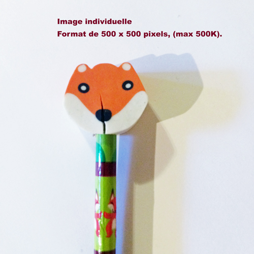 image_individuelle_500x500.jpg