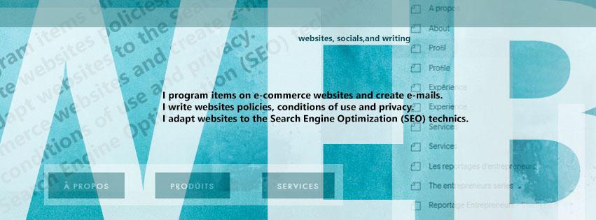 Website design and management service