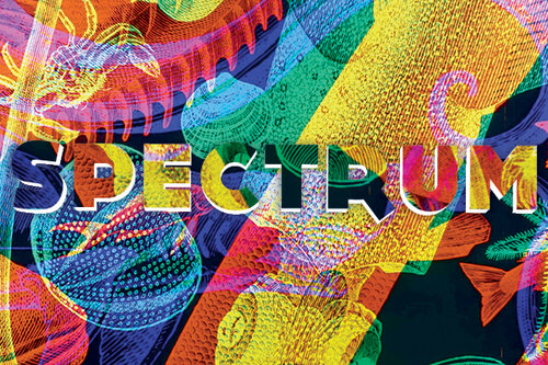 SPECTRUM at The MUSEUM - September 2019 - January 202010 King Street West, Kitchener ON