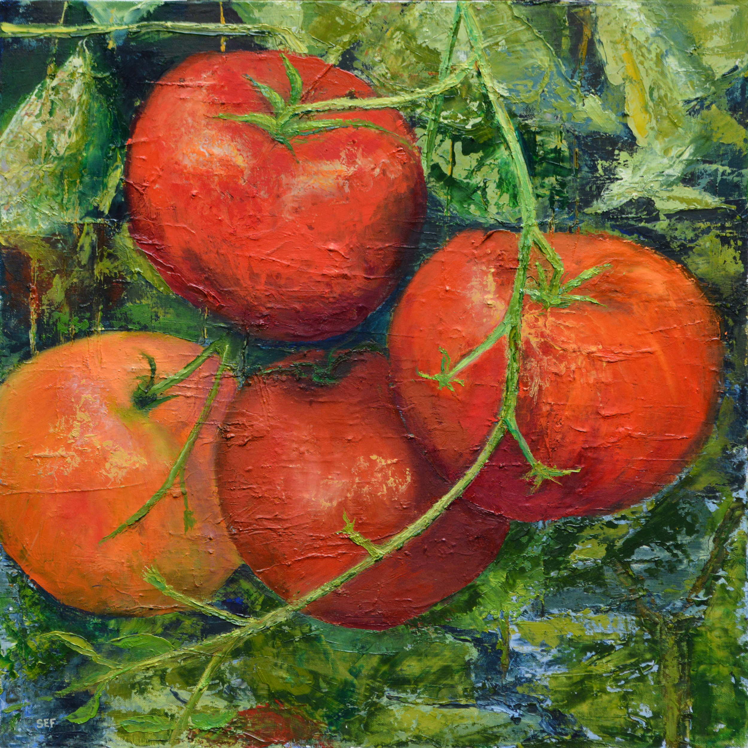RIPE TOMATOES  OIL ON CANVAS  24 X 24  $1,200.