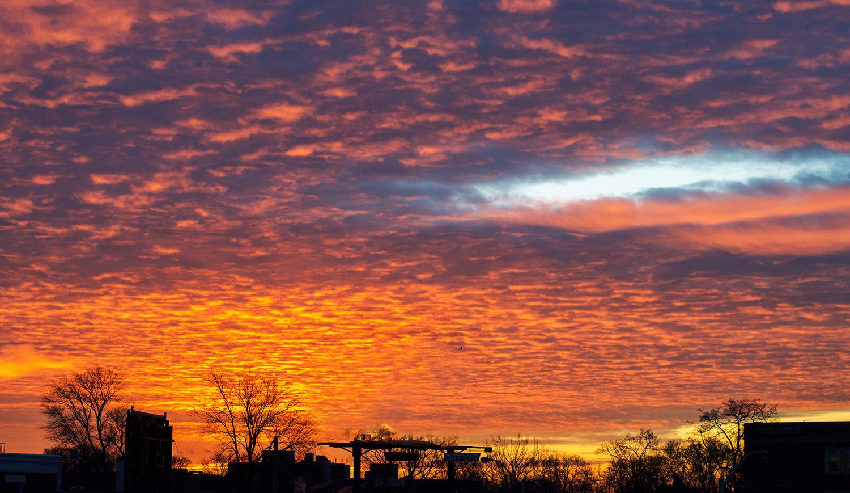sunrise295.jpg