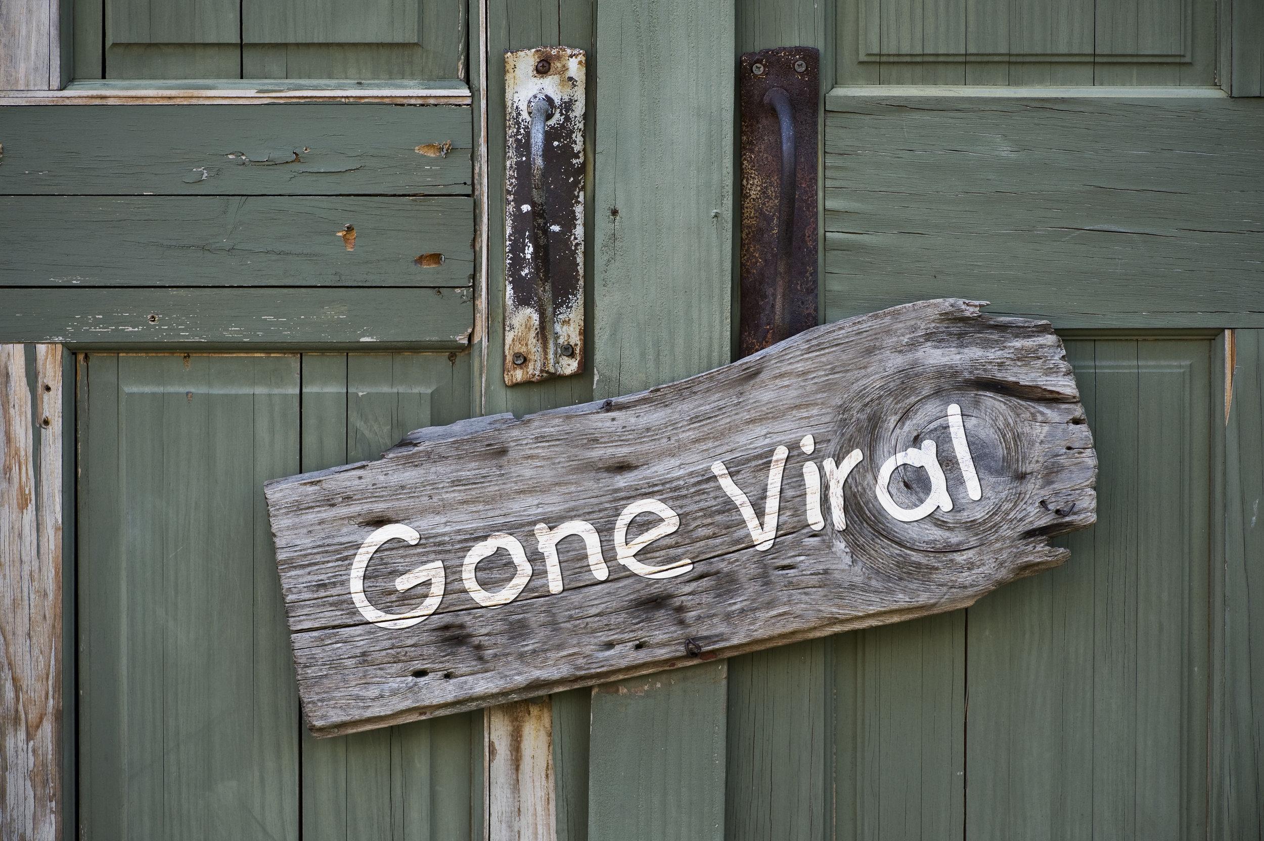 GoneViral.jpg
