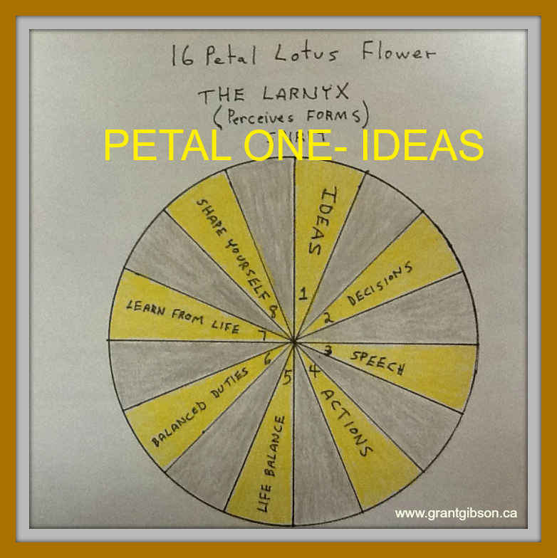 the-larnyx-chakra-petal-one-ideas.jpg