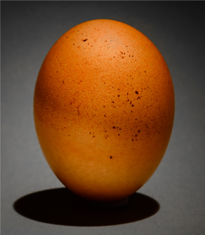 Egg Solitary.png