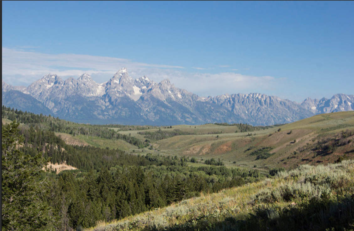 Amazing. This, the drive-through of the Bridger Tetons National Park, not the Yellowstone, was the best part of the trip to Yellowstone Park. Few cars; few people. Not admission. Pull over anywhere and walk anywhere.
