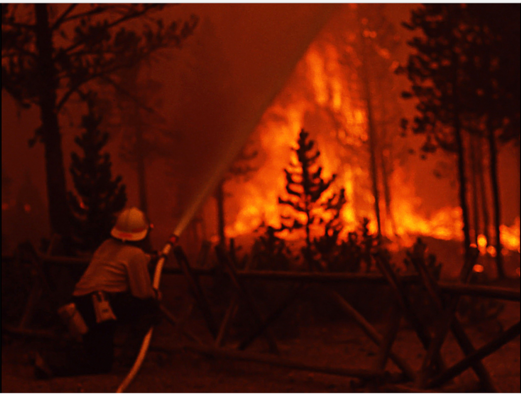 """Firefighting at Norris on August 20, 1988, a day that was later dubbed """"Black Saturday"""" due to the huge amount of land that was burned as well as the dense smoke that turned daytime to night in some places.  Before the late 1960s, fires were generally believed to be detrimental for parks and forests, and management policies were aimed at suppressing fires as quickly as possible.  However, as the beneficial ecological role of fire became better understood in the decades before 1988, a policy was adopted of allowing natural fires to burn under controlled conditions, which proved highly successful in reducing the area lost annually to wildfires."""