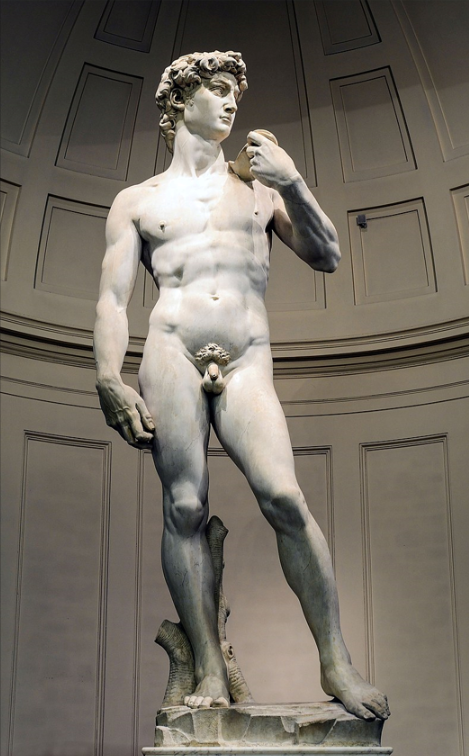 David, by Michelangelo (Accademia di Belle Arti, Florence, Italy) is a masterpiece of Renaissance and world art.