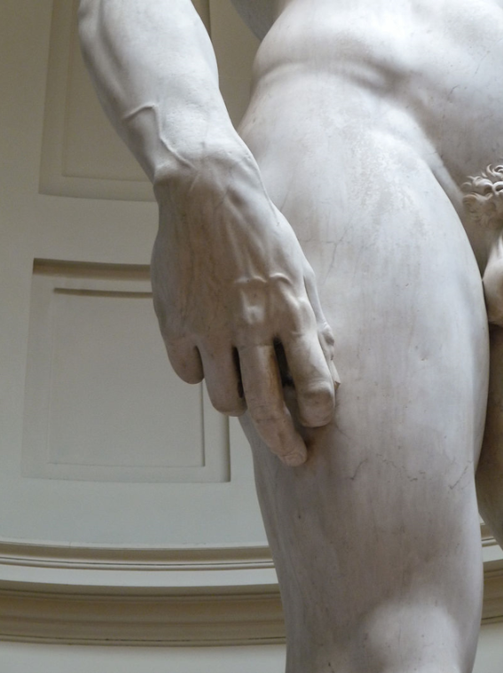 Michelangelo's David detail right hand.png