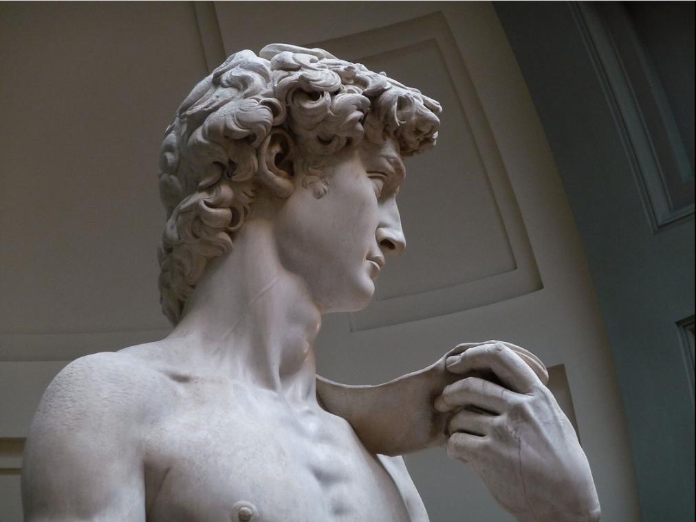 Michelangelo's David detail head.png