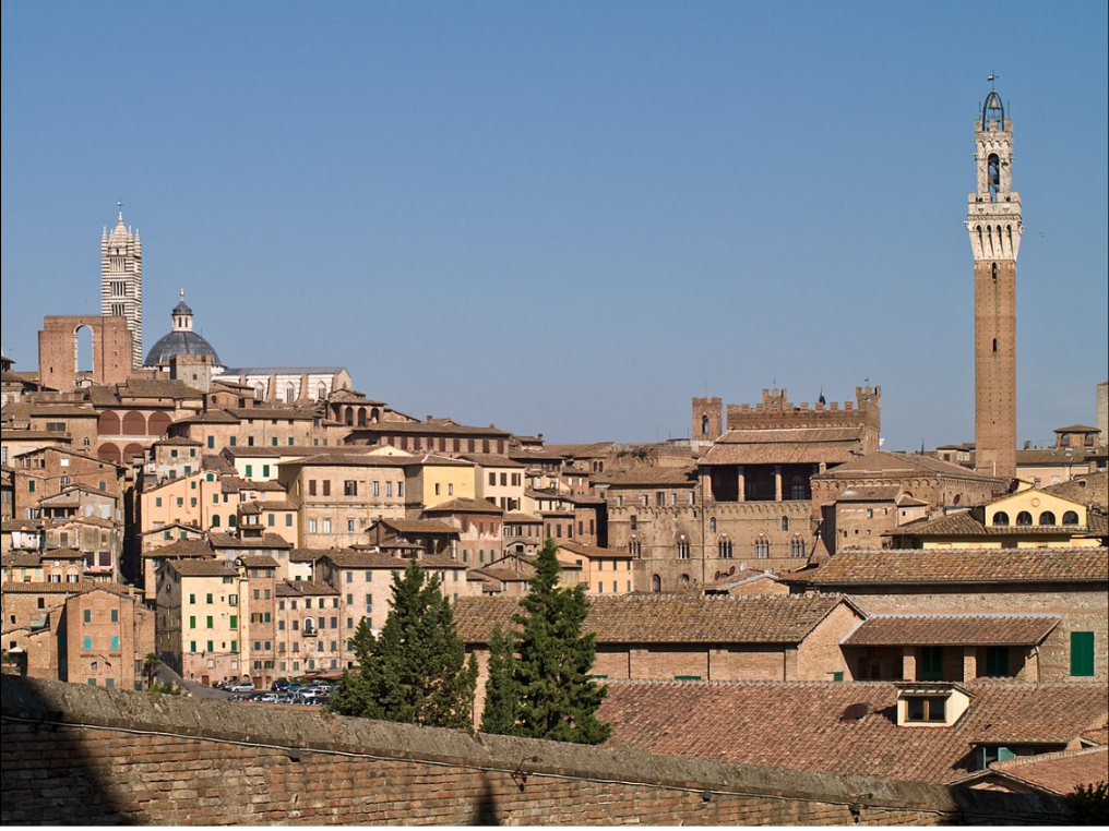 Siena, seen from Santa Maria dei Servi.  On the left, top of the hill, the cathedral of Siena (Santa Maria Assunta or Duomo di Siena) and the Facciatone.  On the right, the back of the Palazzo Pubblico and the Torre del Mangia.