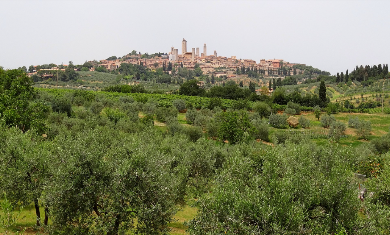 Not many cities or towns rate three stars from the Guide Michelin. San Gimignano does. With good reason.
