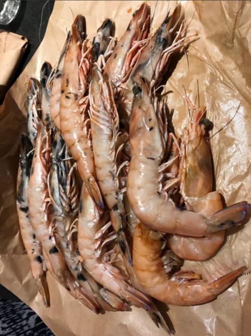 tiger prawns.png