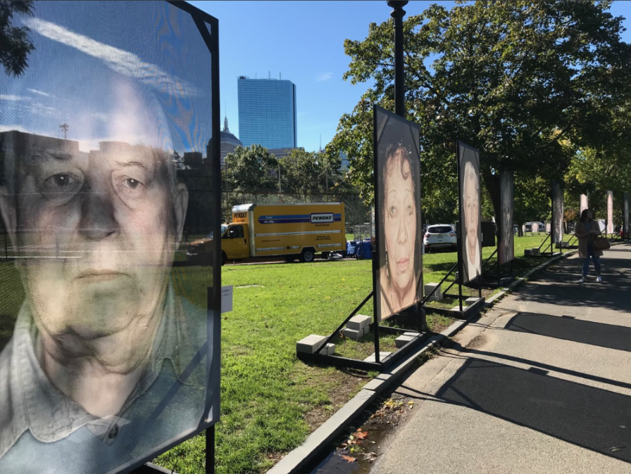 lest we forget row of portraits.png