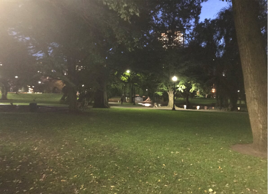 pg at night 1.png