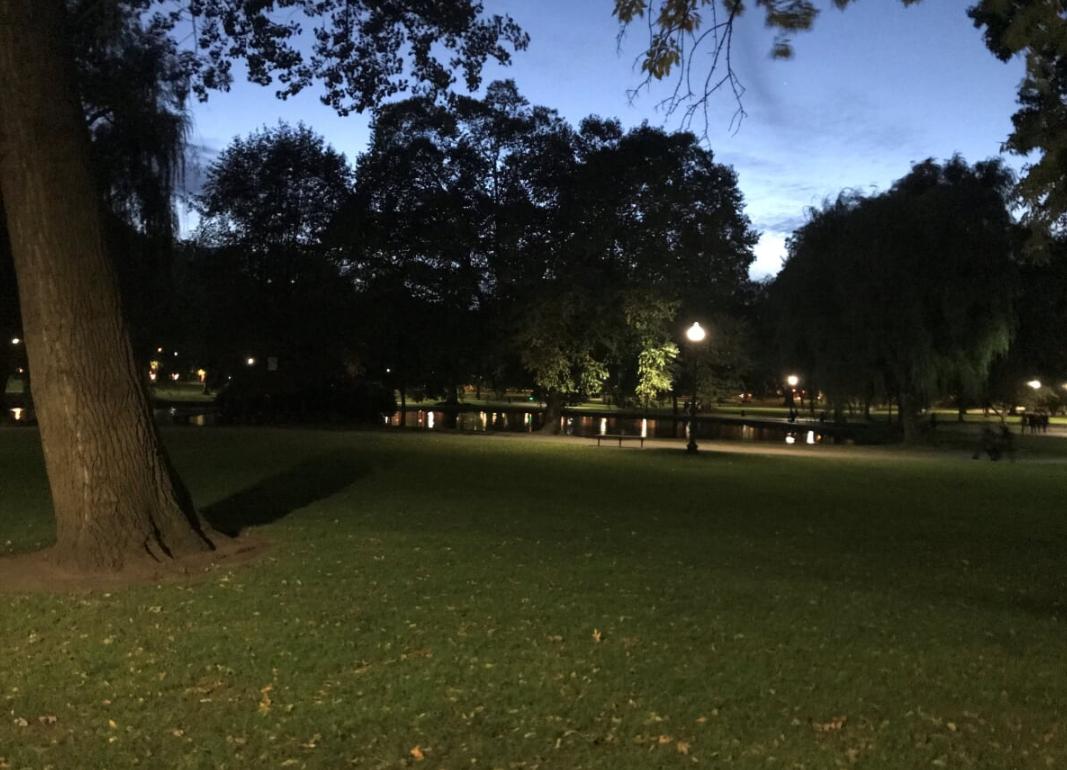 pg at night 2.png