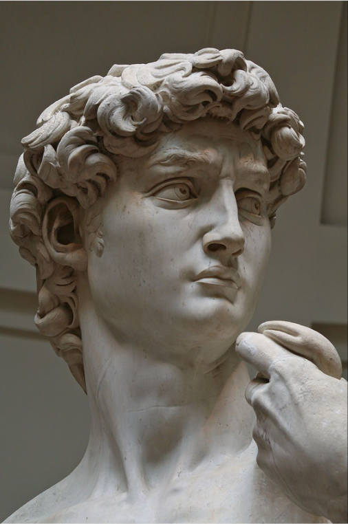 Michelangelo's David detail eyes to rome.png