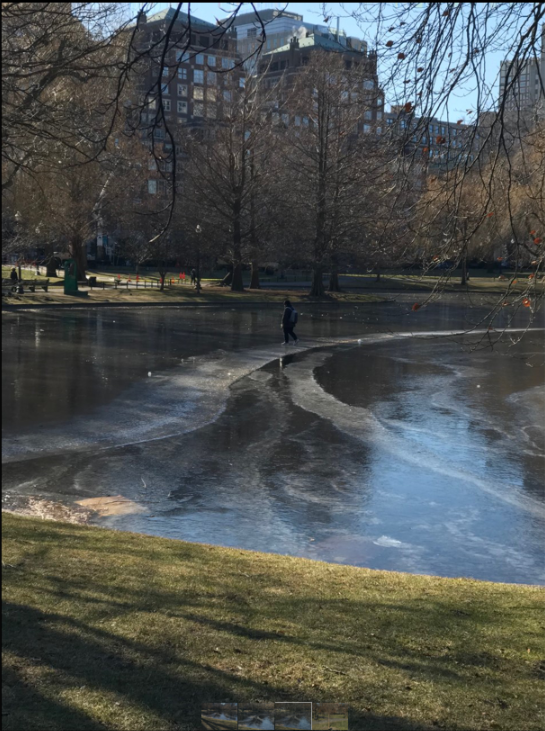 public garden walking on water.png