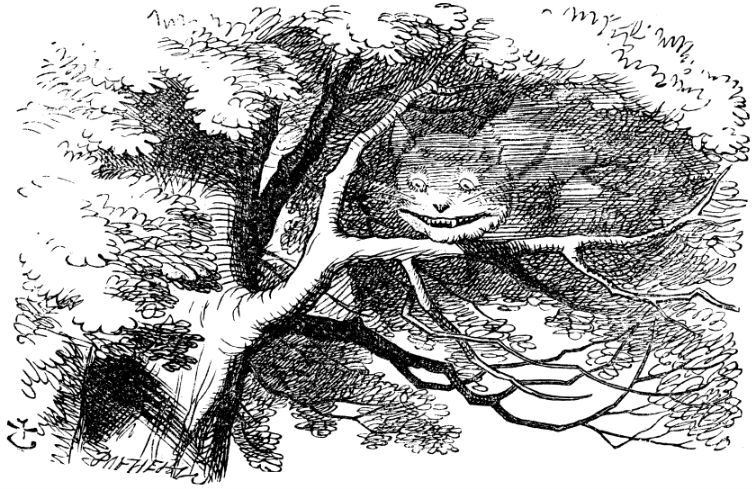 The Cheshire Cat vanishes in Wonderland   Dreams can have varying natures, such as being frightening, exciting, magical, melancholic, adventurous, or sexual.  The events in dreams are generally outside the control of the dreamer, with the exception of lucid dreaming, where the dreamer is self-aware. Dreams can at times make a creative thought occur to the person or give a sense of inspiration.