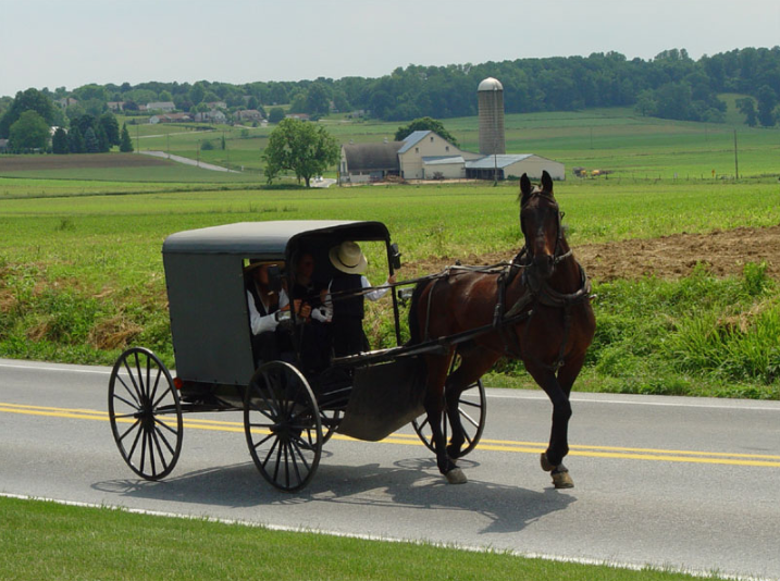 Amish family riding in a traditional Amish buggy in Lancaster County, Pennsylvania, USA.it:Utente:TheCadExpert - it:Immagine:Lancaster_County_Amish_03.jpg