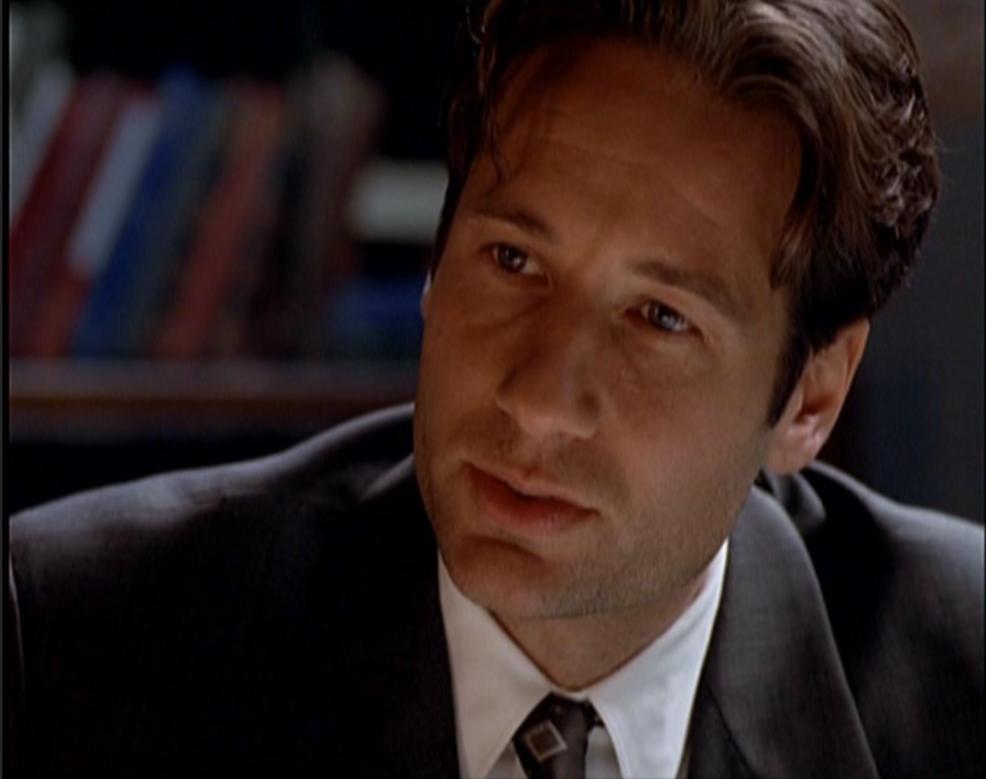 David Duchovny as Fox Mulder
