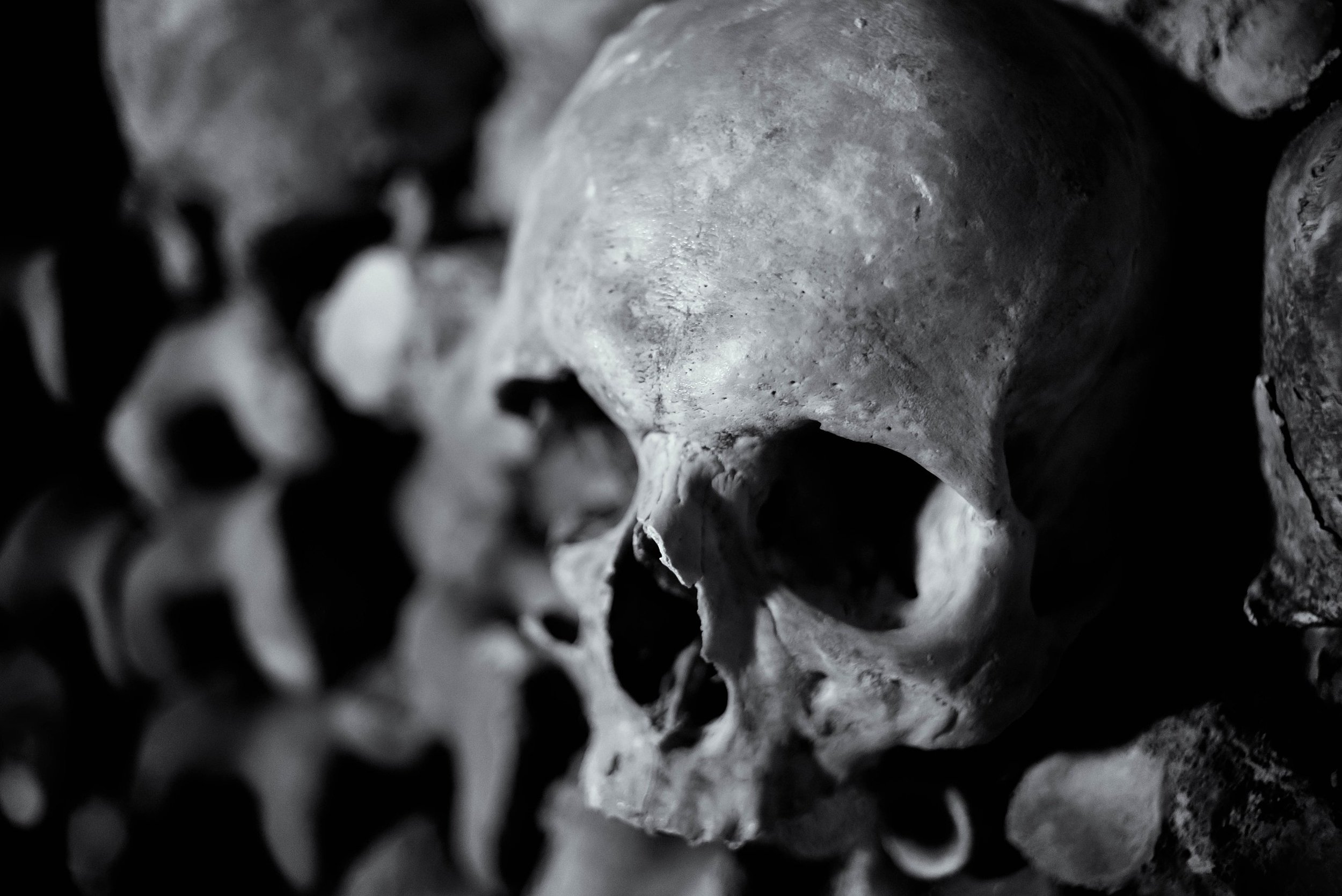 The Human Skull is used universally as a symbol of death. Joe deSousa - Human skull in the catacombs of Paris