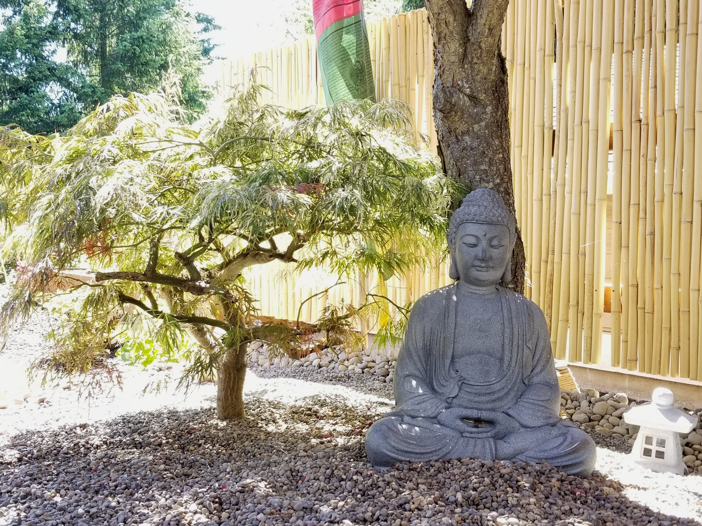 Garden+buddha.jpg
