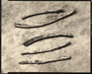5-sticks-300x240.jpg