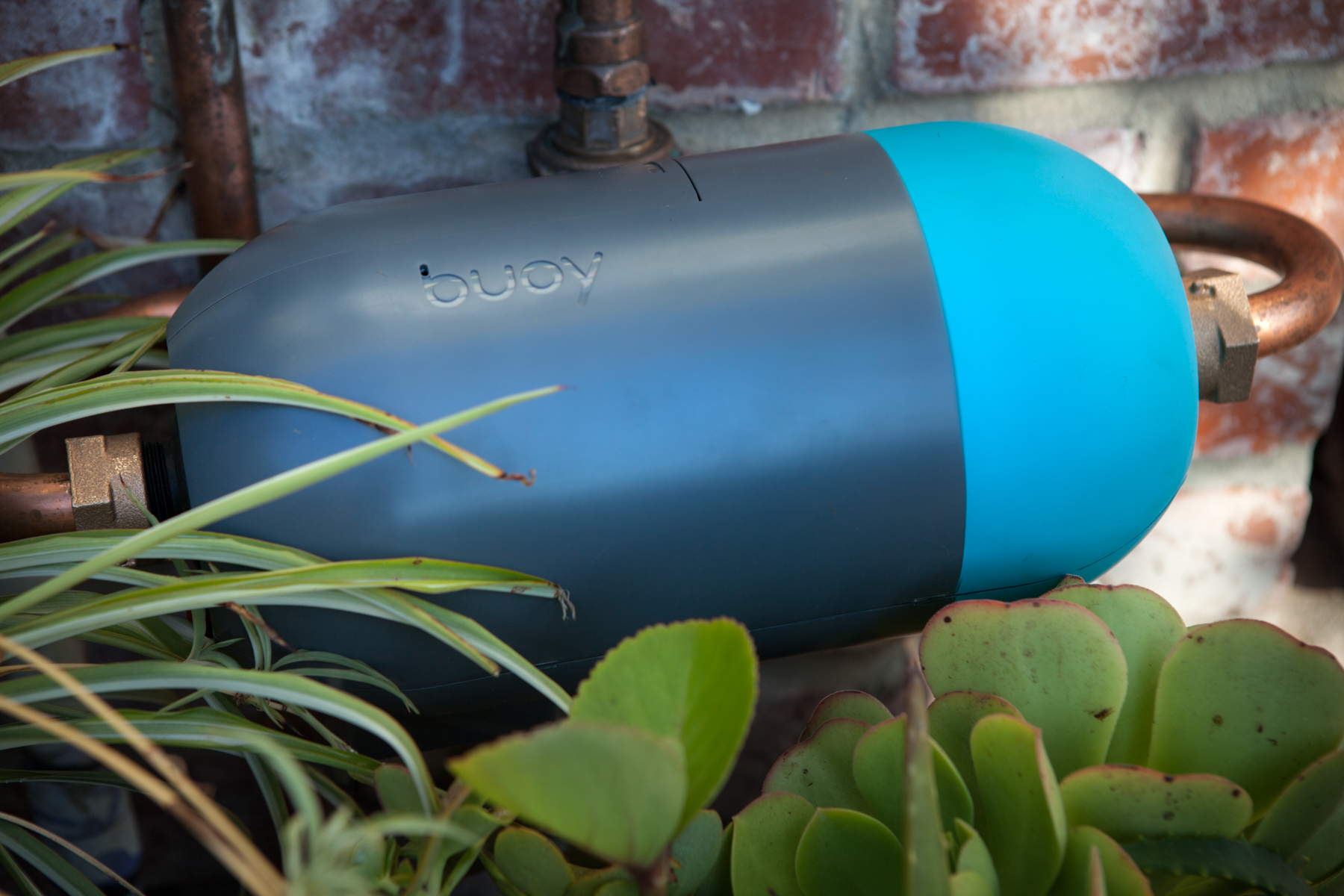 buoy-install-hor-on-waterhorn-2.jpg