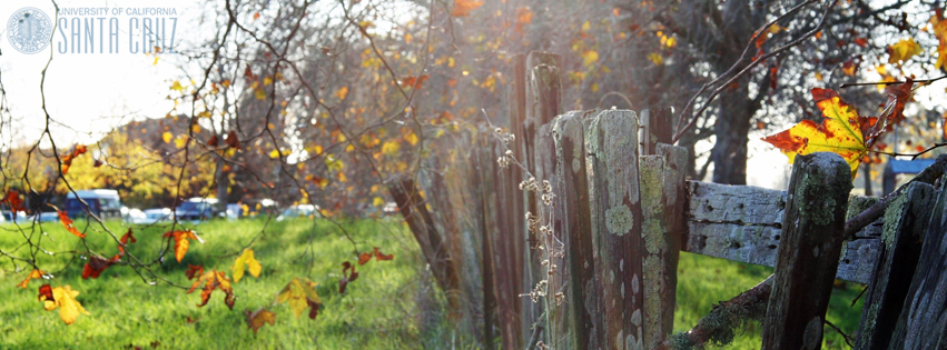 uc-santa-cruz-old-fence.jpg