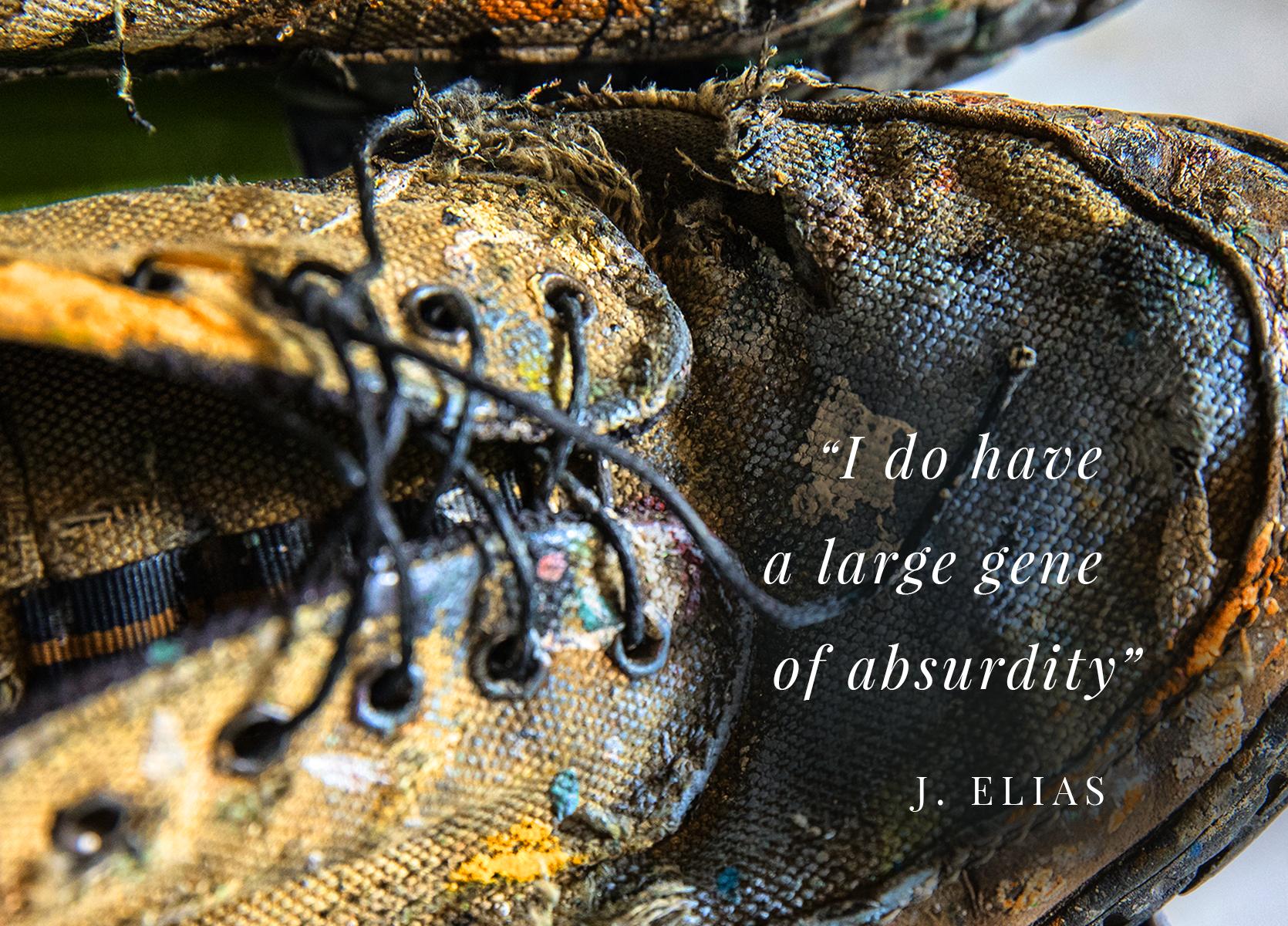 Absurdity-quote-Joshua-Elias.png
