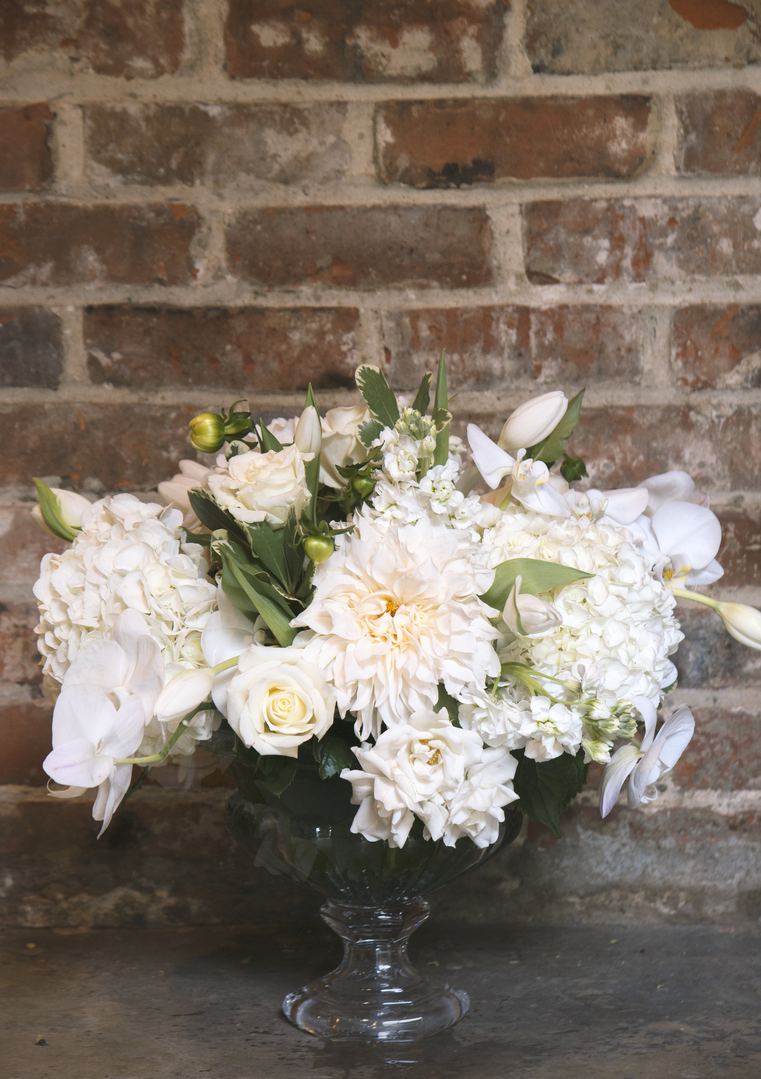 clooney mums white phals hydrangea and roses and sprays and mitchs flowers.jpg