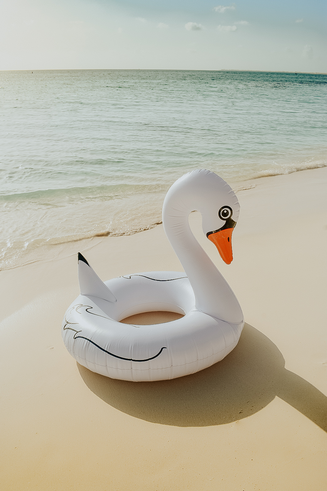 I had to leave my swan floatie behind
