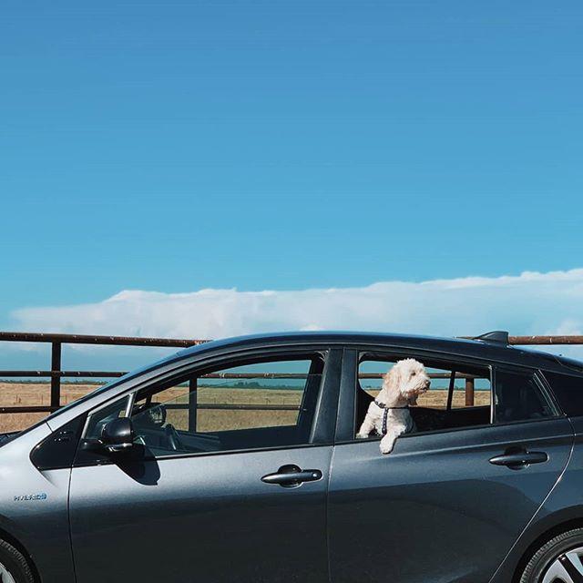 Road trippin in open skies 💙 . #sunpower #holidayweekend #wellness