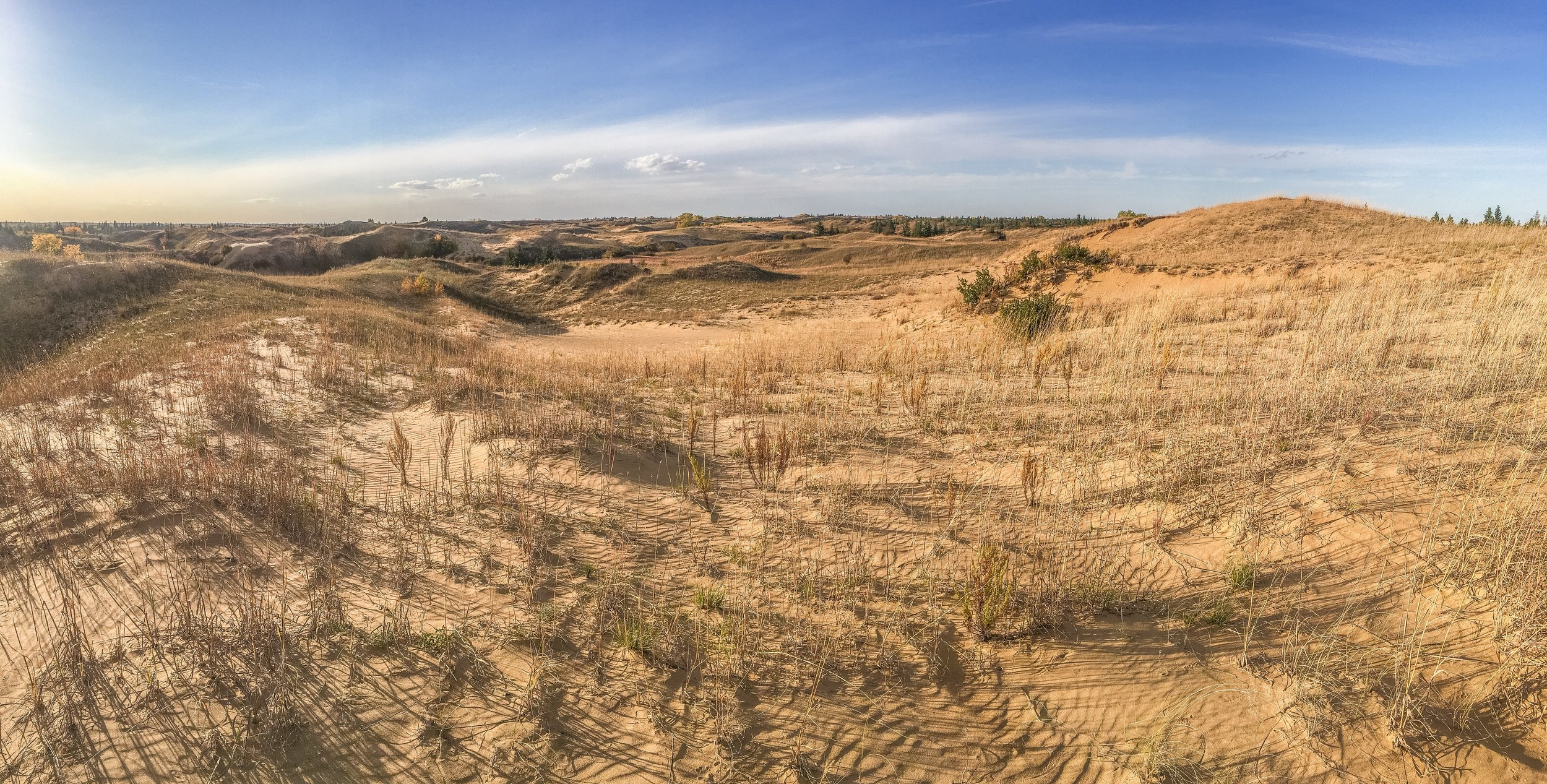 Endless waves of dunes in the Canadian sand hills.