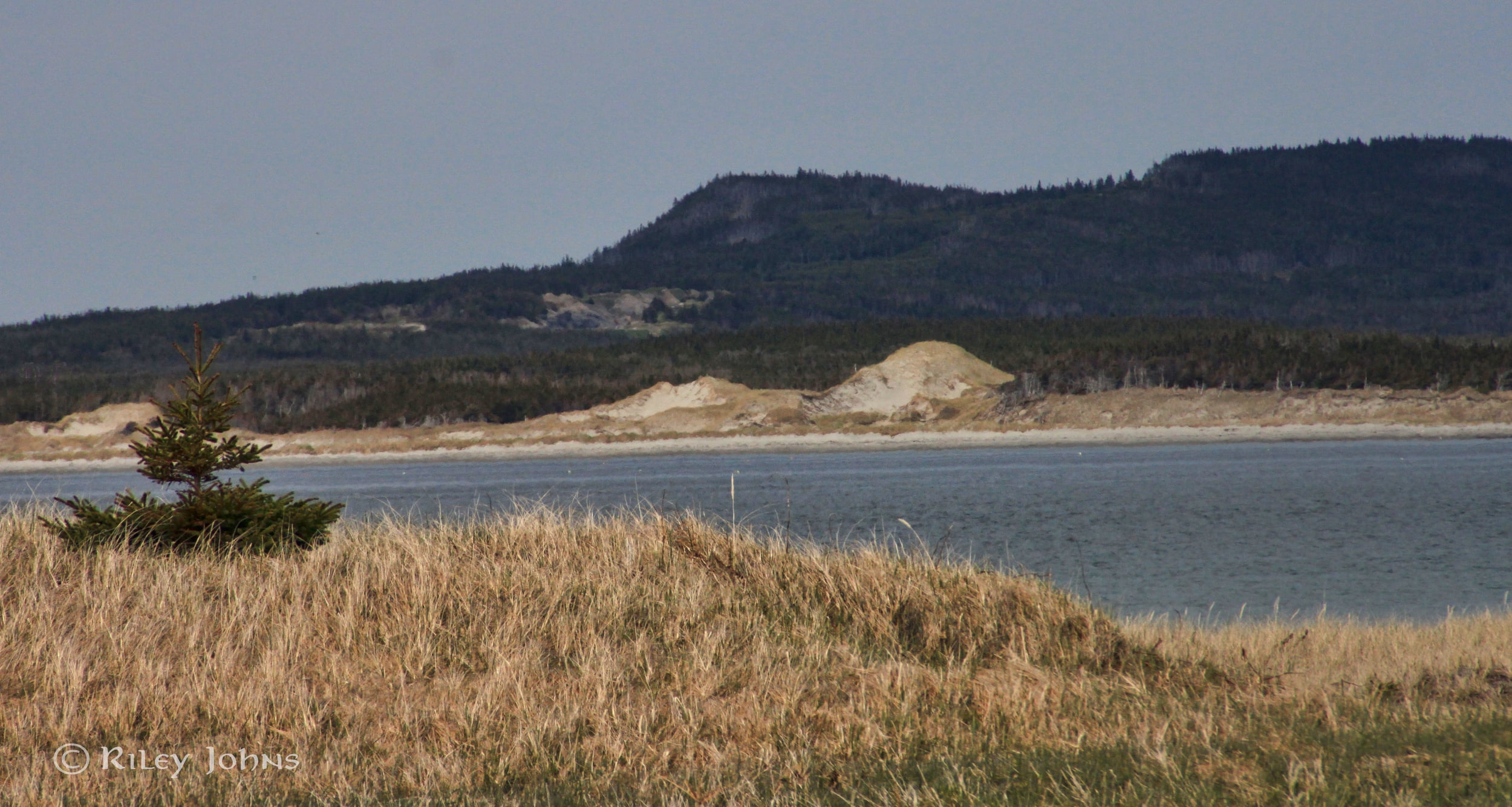 """Towering blowout dune from a distance. Can you say """"St Enodoc""""?"""