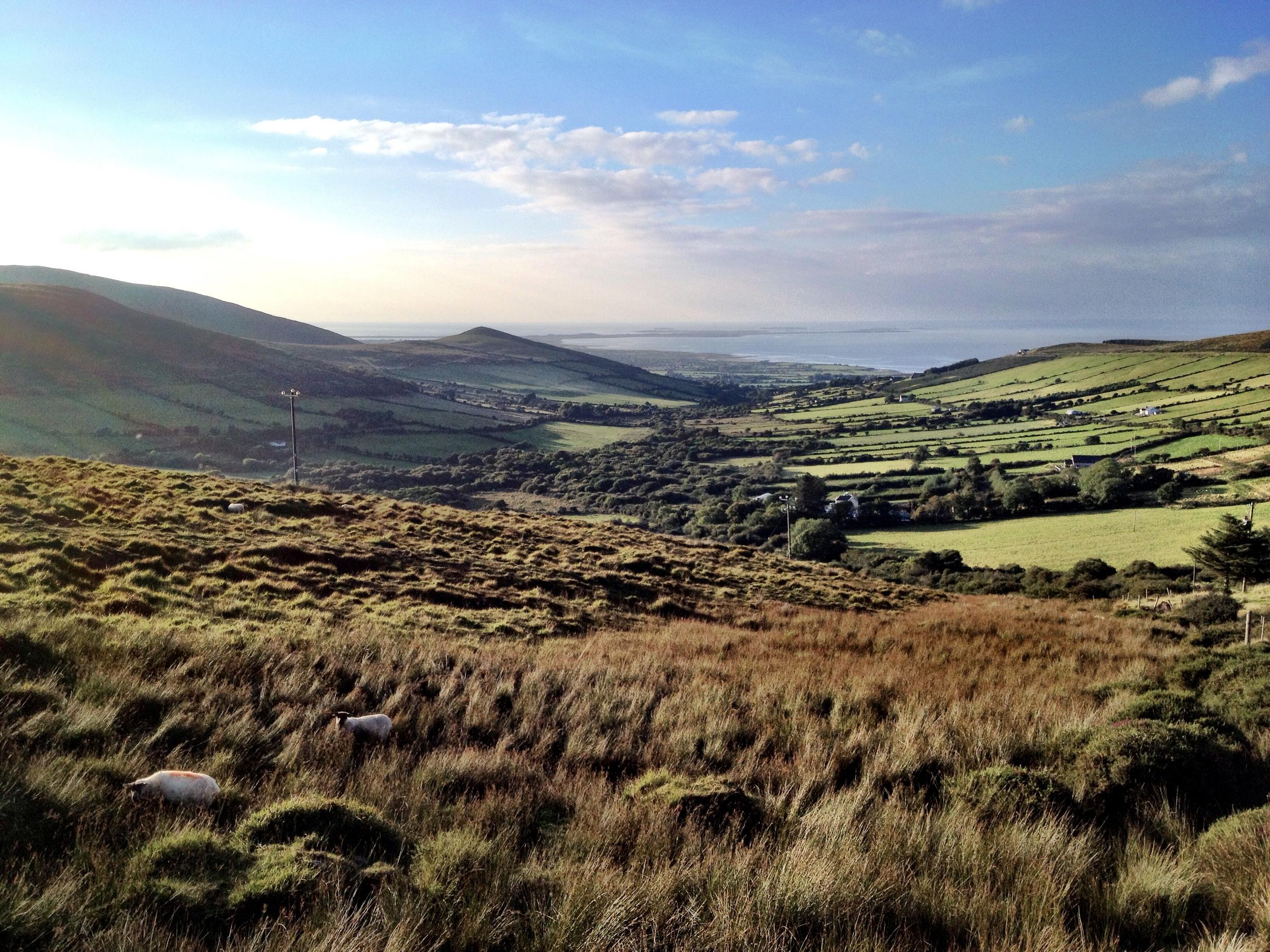 Driving through the Irish countryside.
