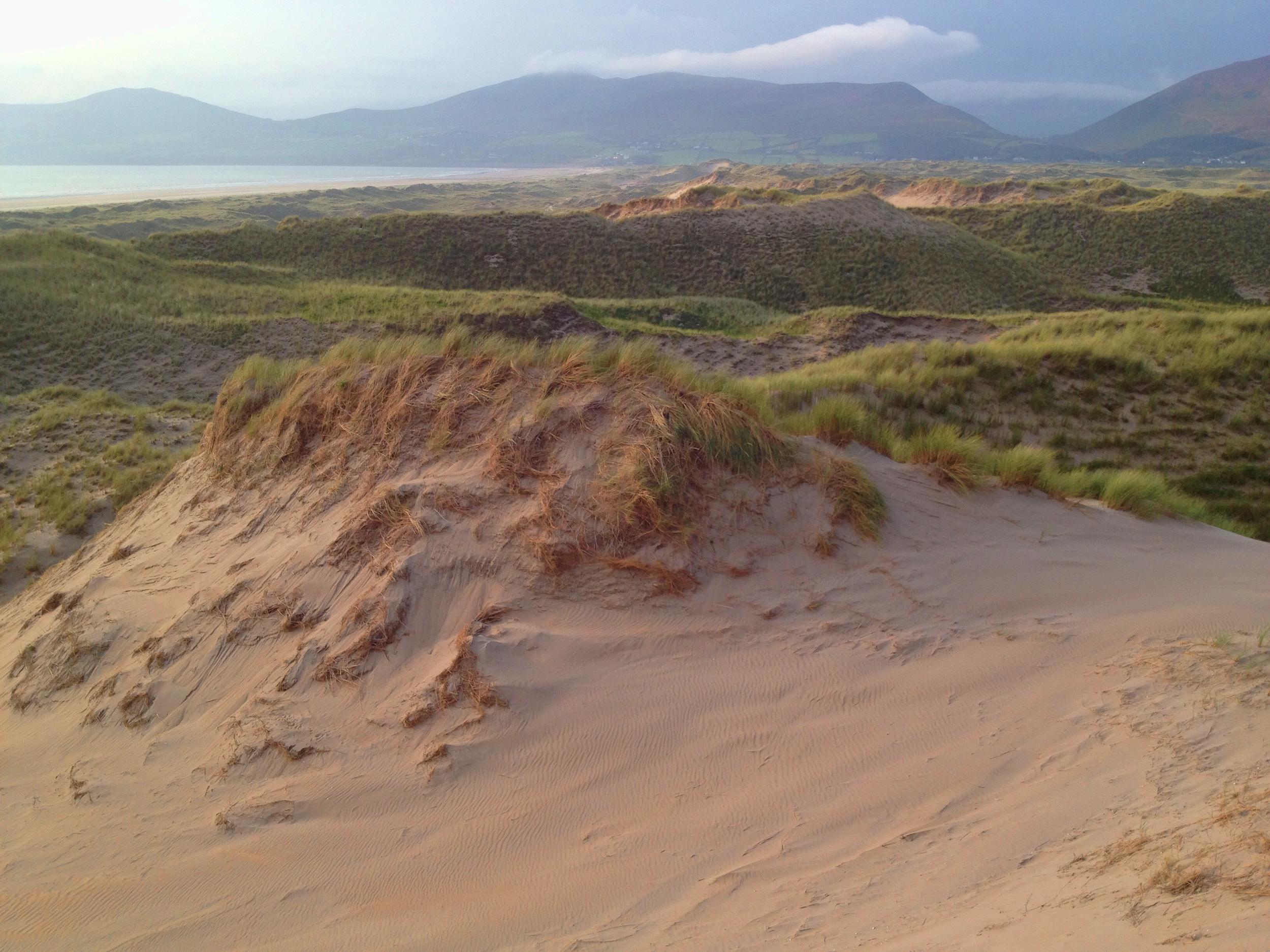 Inch Dunes - Integrative Golf.jpg
