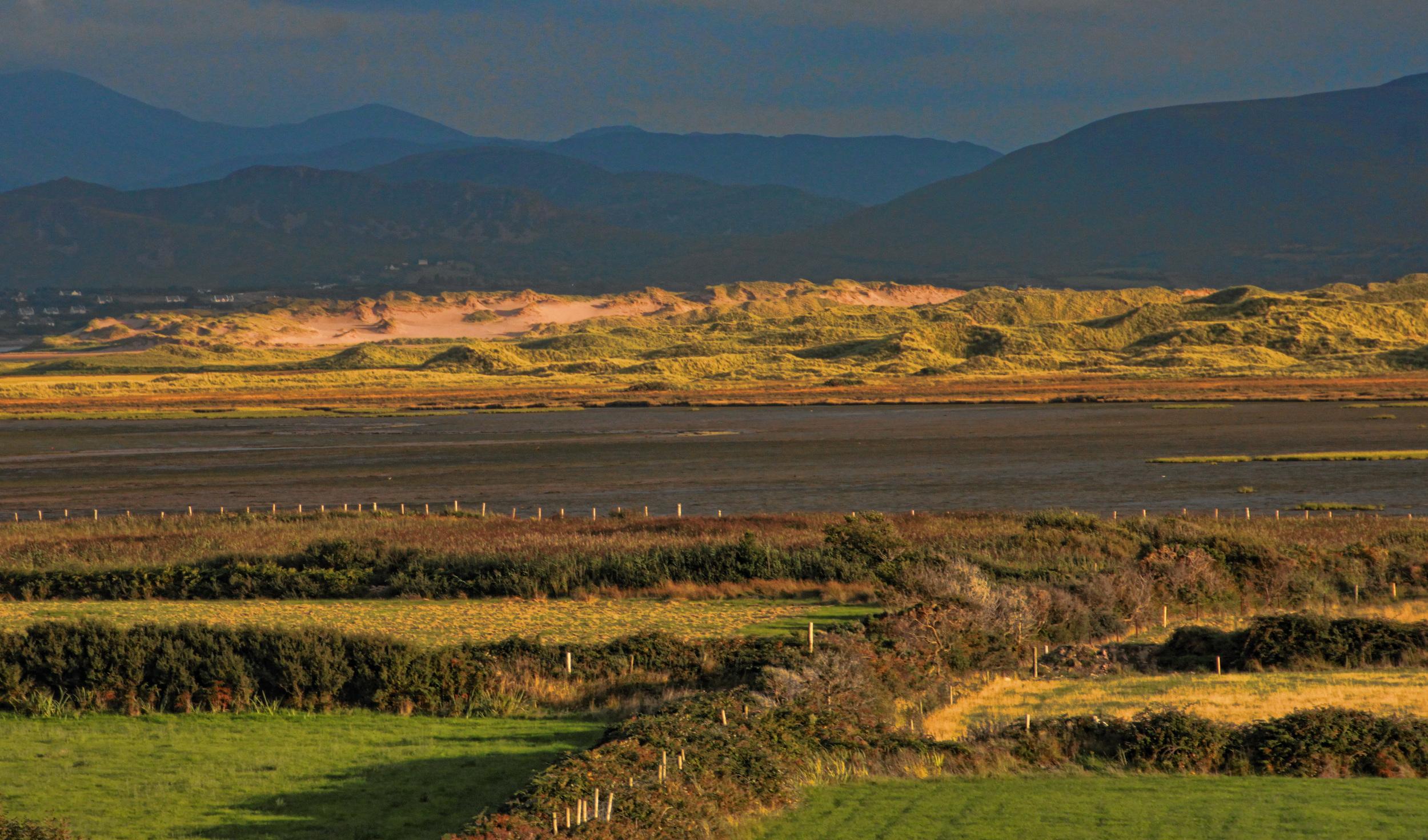 Inch Dunes 3 - Integrative Golf.jpg