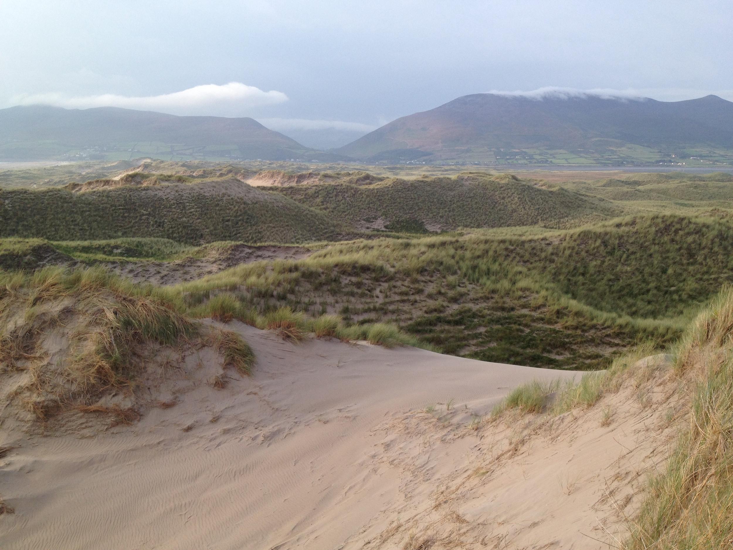 Inch Dunes 0 - Integrative Golf.JPG