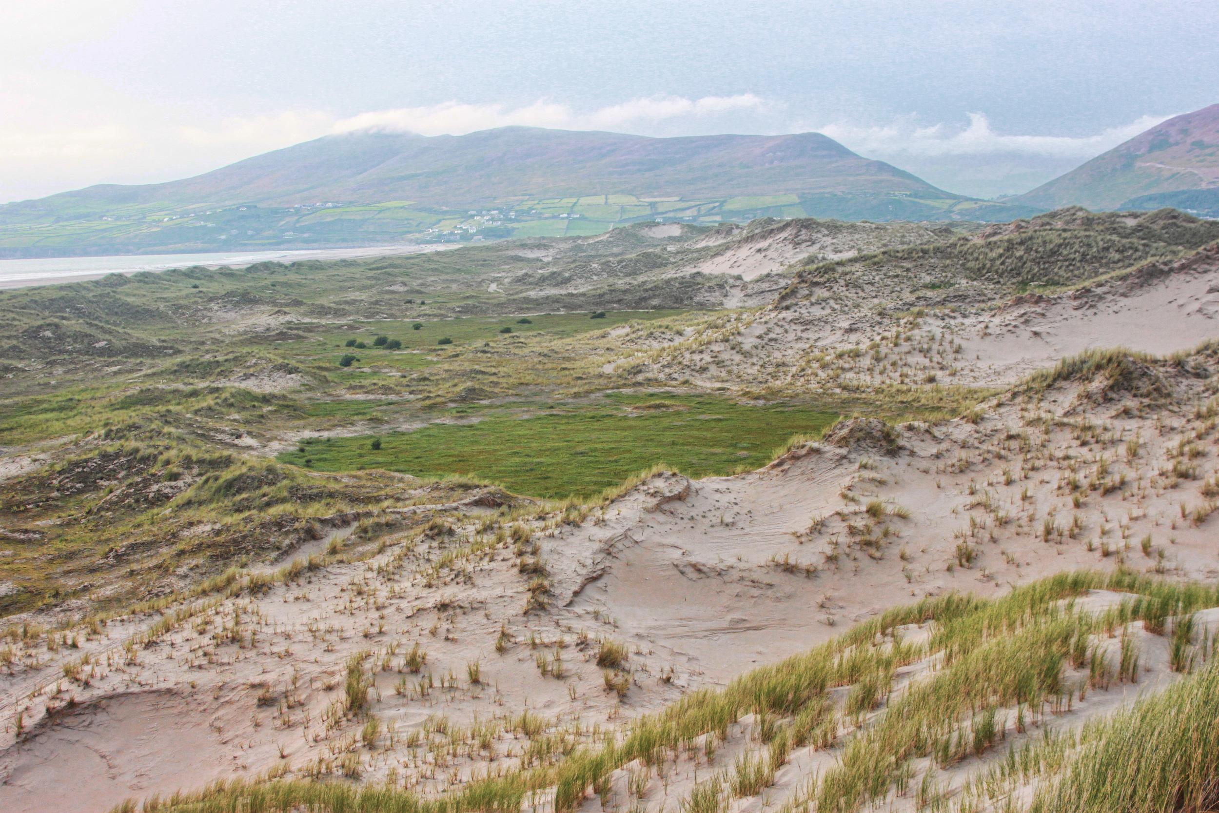 Inch Dunes 10 - Integrative Golf.jpg